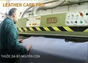 Quy trình thuộc da bò tại nhà máy thuộc da